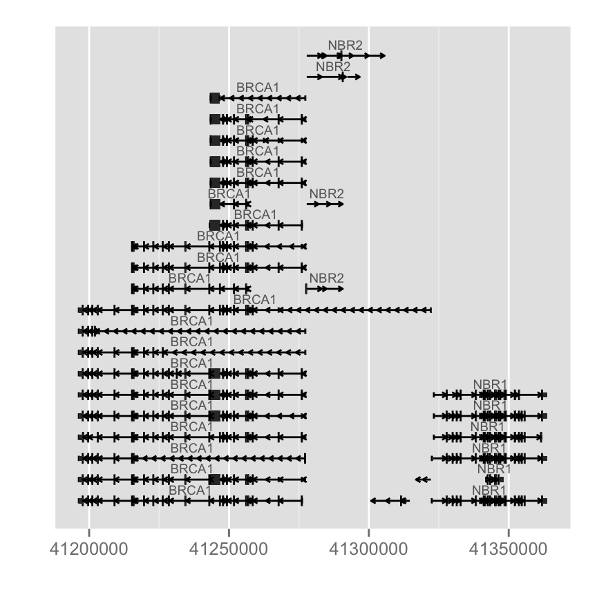 plot of chunk gene-model-from-organismdb