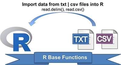 Reading Data From txt|csv Files: R Base Functions