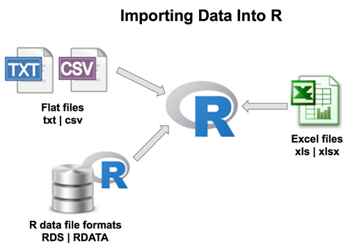 Importing data into R