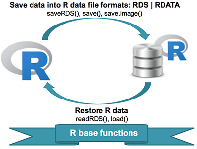 Save data into R data formats